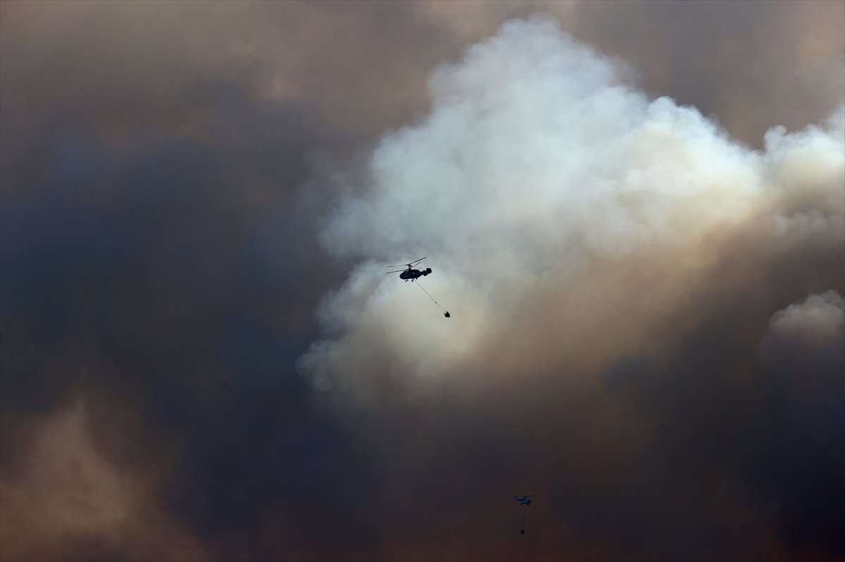 Foça da orman yangını #6