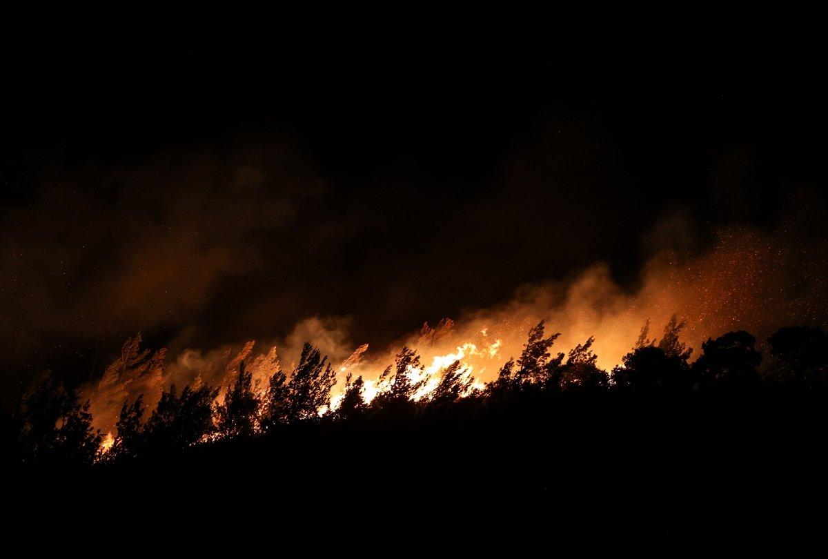 Foça da orman yangını #3