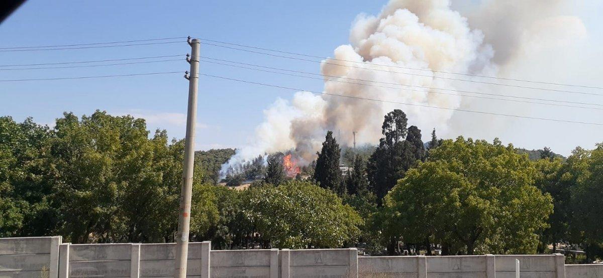 Foça da orman yangını #8
