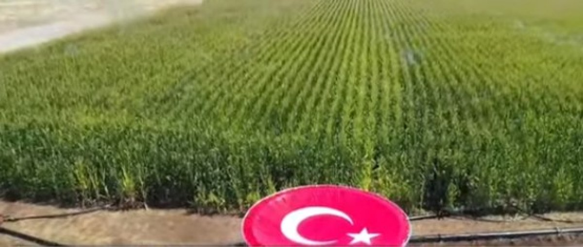 Cumhurbaşkanı Erdoğan, Diyarbakır da tamamlanan tesislerin açılış törenine katıldı #4