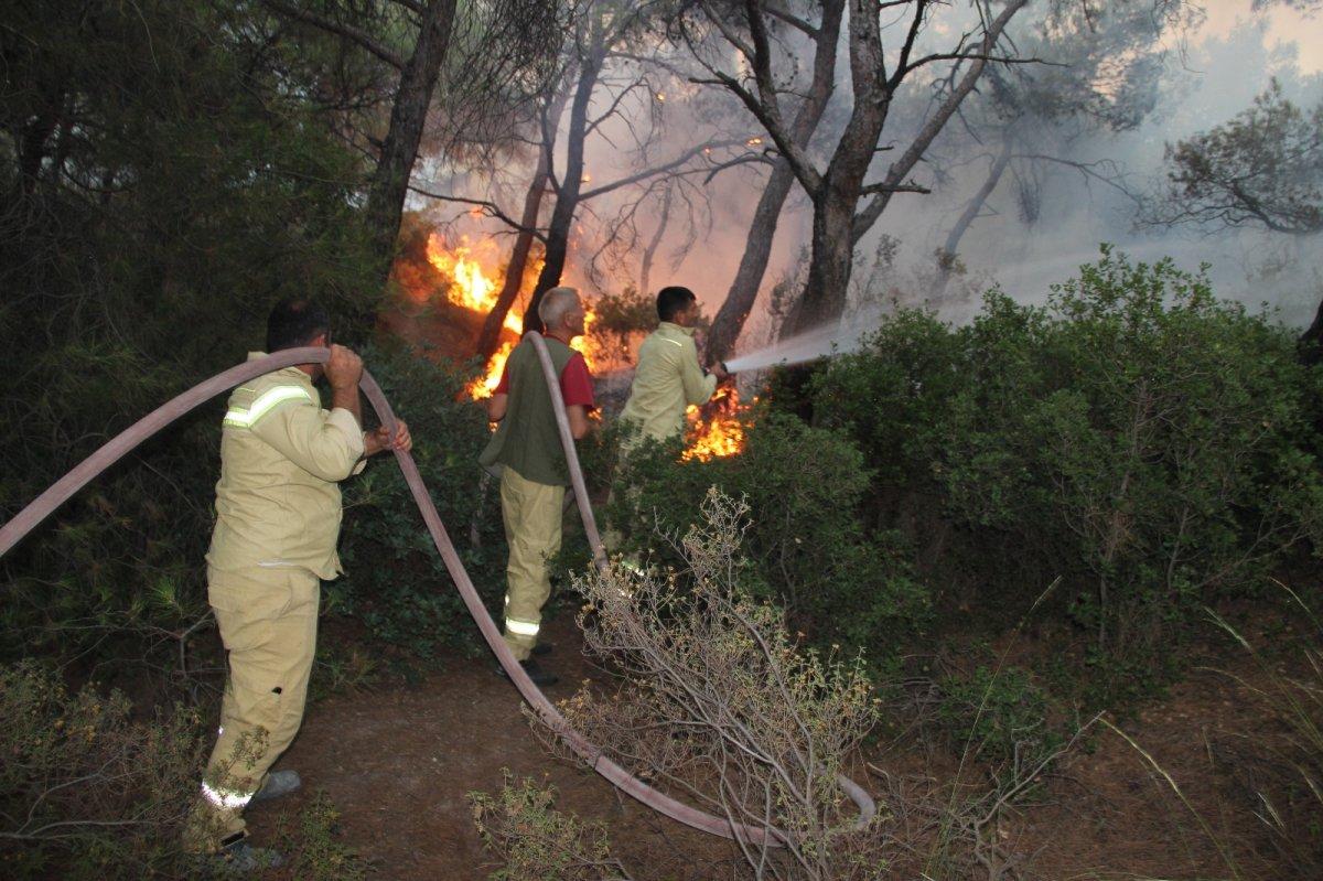 İzmir Foça da orman yangını kontrol altına alındı #3