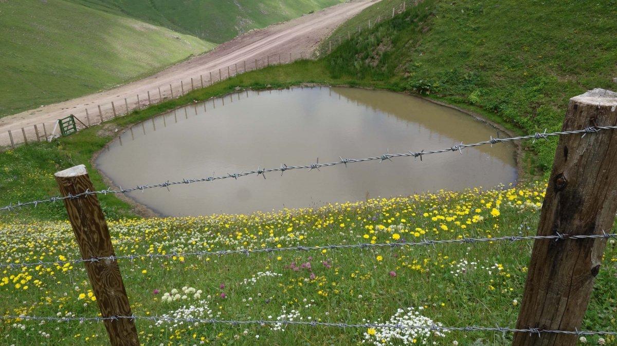 Gümüşhane deki Dipsiz Göl, eski görünümüne kavuşamadı #4