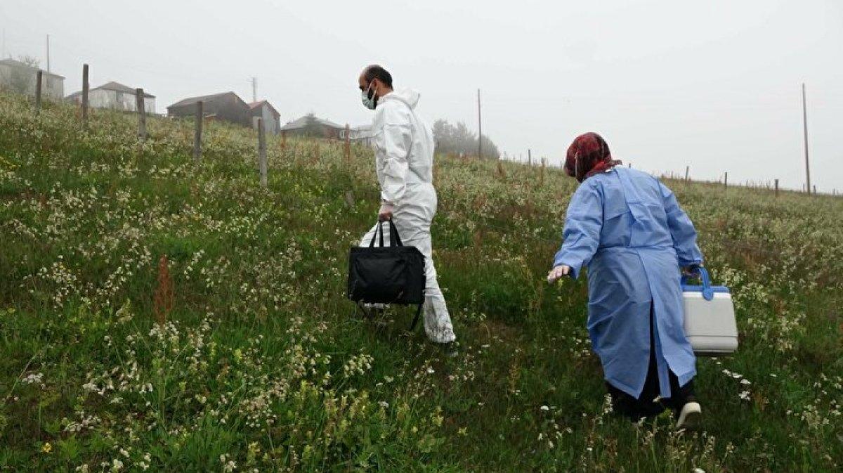 Karadeniz de aşı mesaisi: Sağlık çalışanları 1800 metreye çıktı  #8