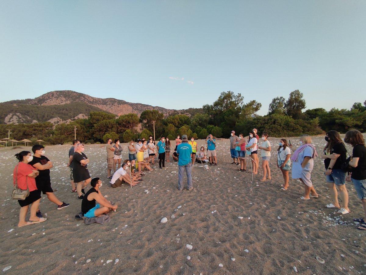 Antalya da caretta caretta yavrularının denize doğru zorlu yolculuğu başladı #5