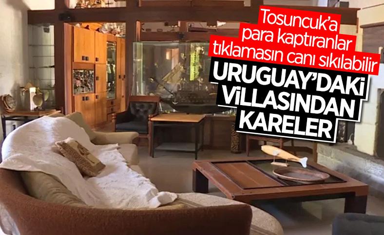 'Tosuncuk' lakaplı Mehmet Aydın'ın malikanesinin fotoğrafları