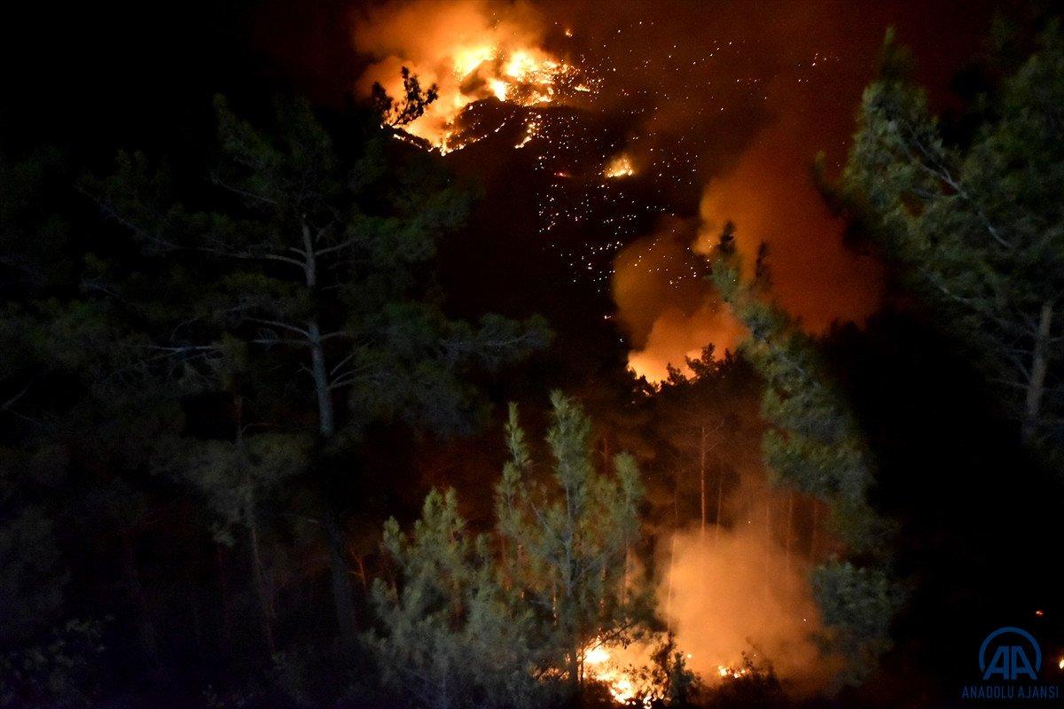 Mersin ve Hatay da orman yangını #7