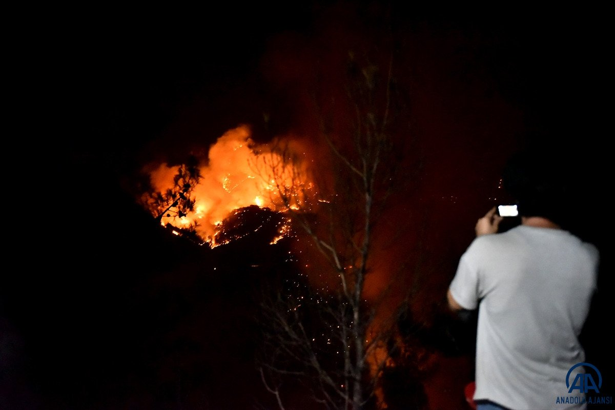 Mersin ve Hatay da orman yangını #9
