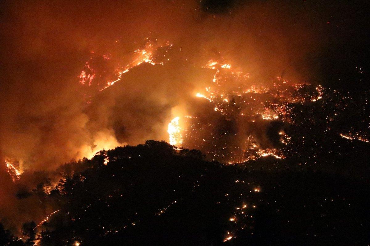 Mersin ve Hatay da orman yangını #1