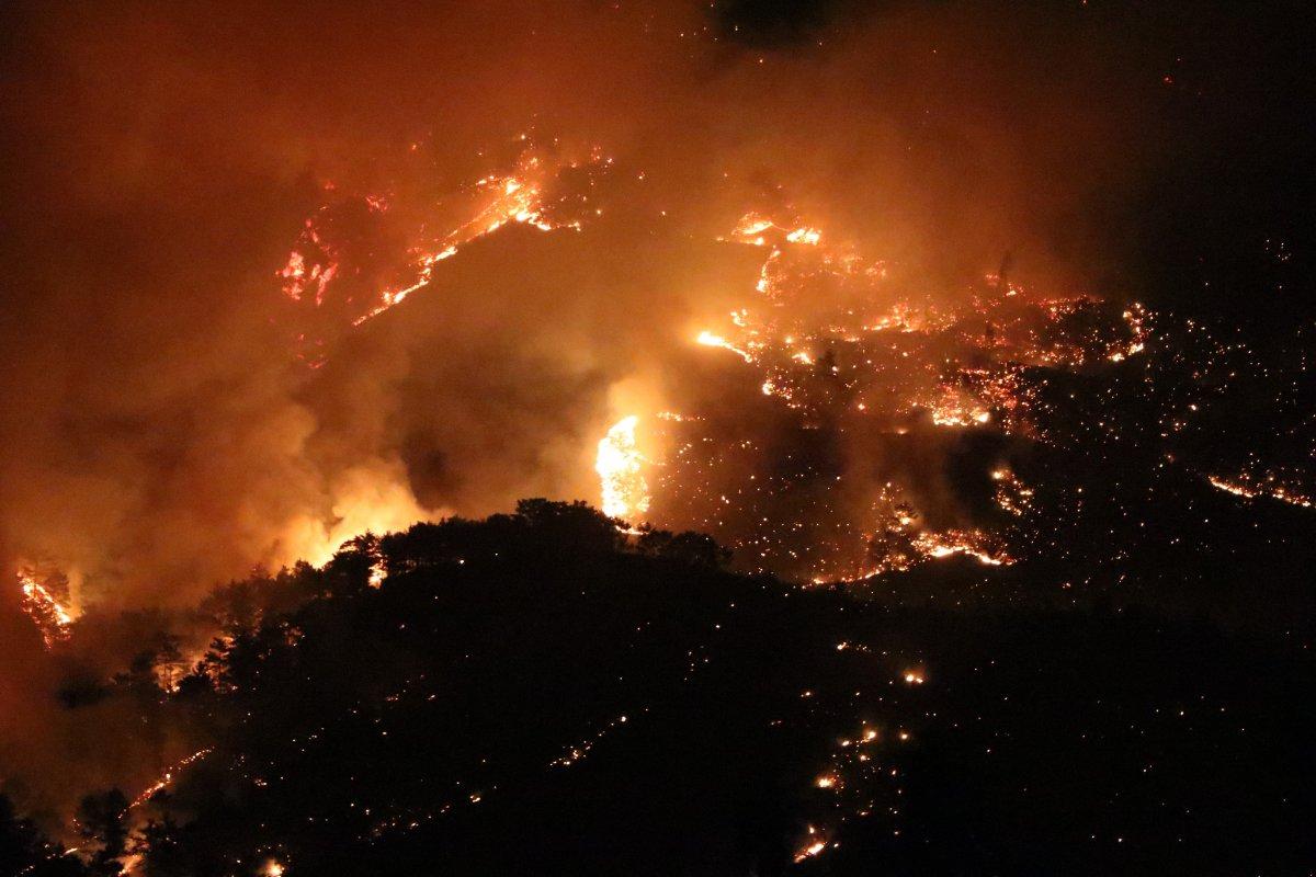 Mersin ve Hatay da orman yangını #4