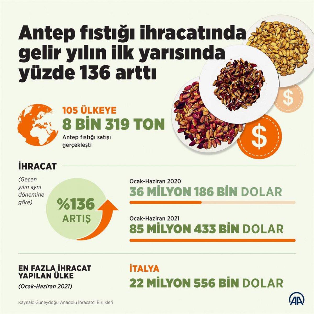 Antep fıstığı ihracatından gelir yüzde 136 arttı #2