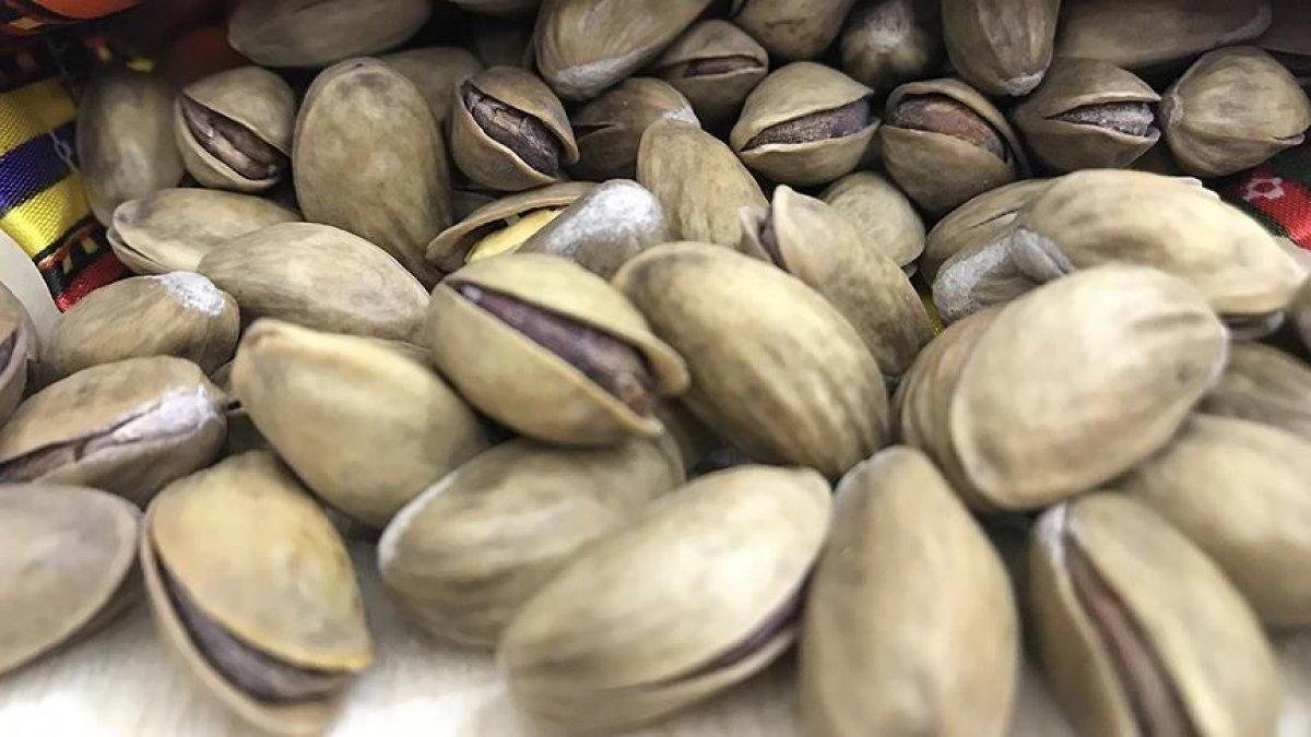 Antep fıstığı ihracatından gelir yüzde 136 arttı #1