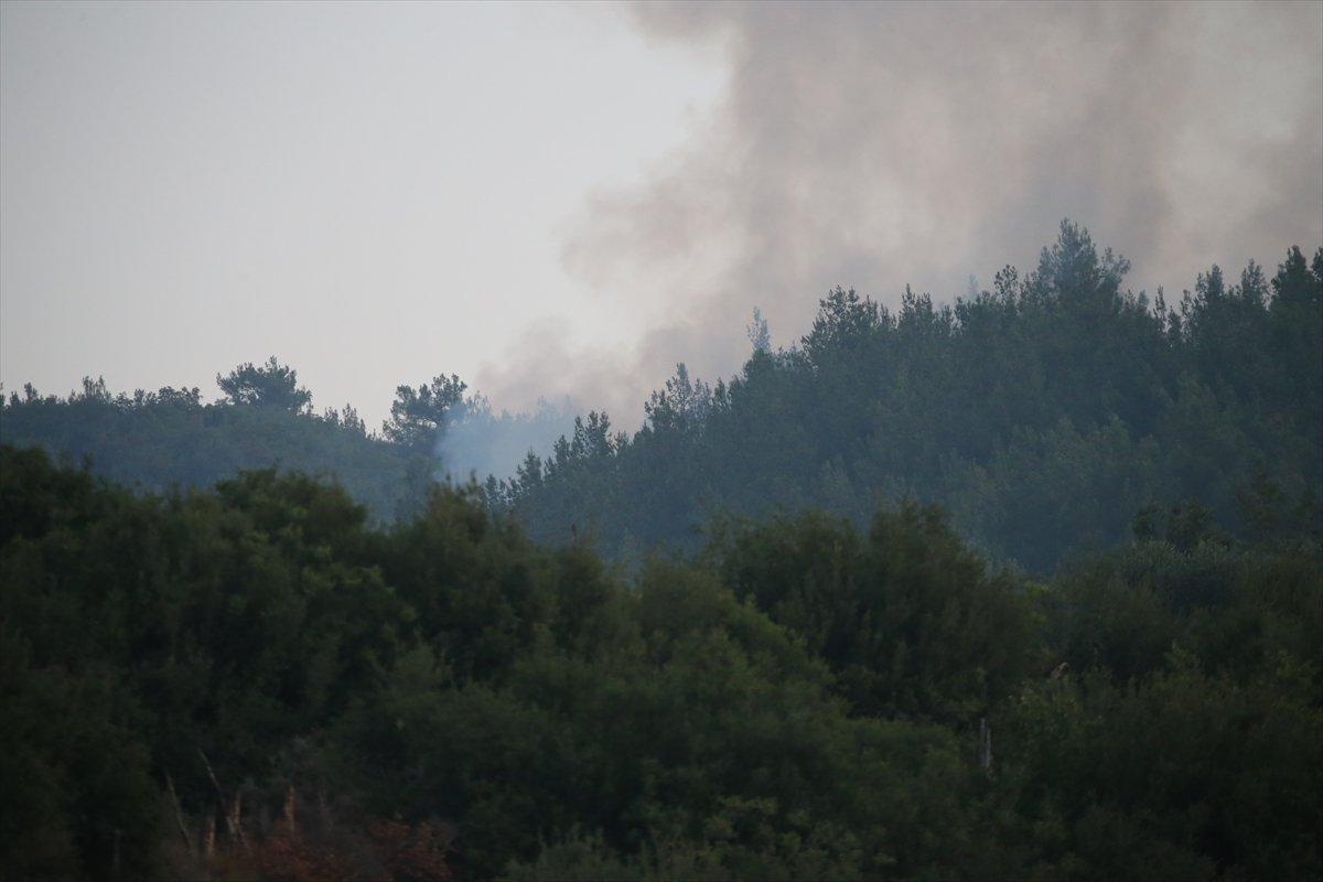 Mersin ve Hatay daki orman yangınları sürüyor #7