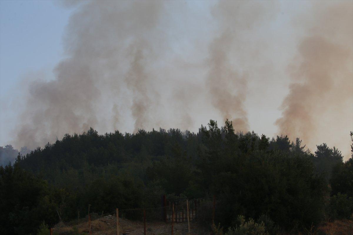 Mersin ve Hatay daki orman yangınları sürüyor #6