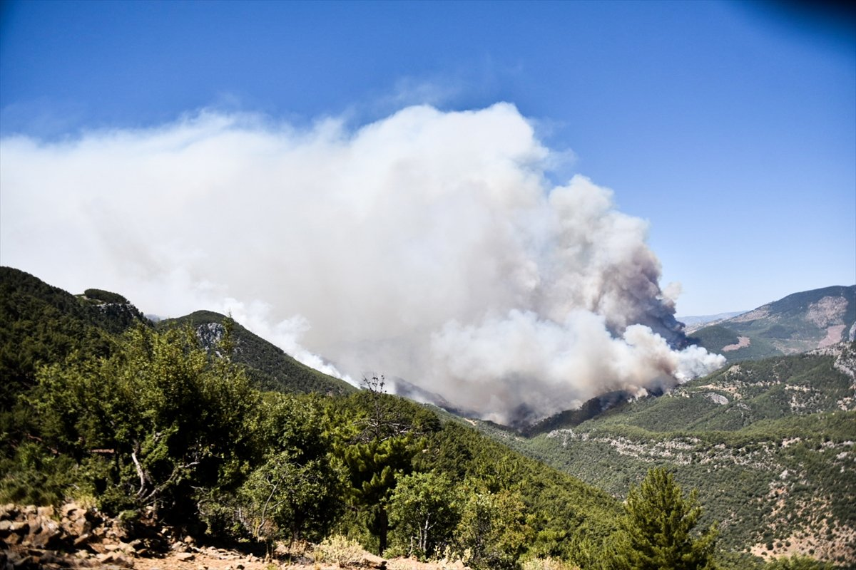 Mersin deki orman yangınıyla ilgili 4 şüpheli gözaltına alındı #3