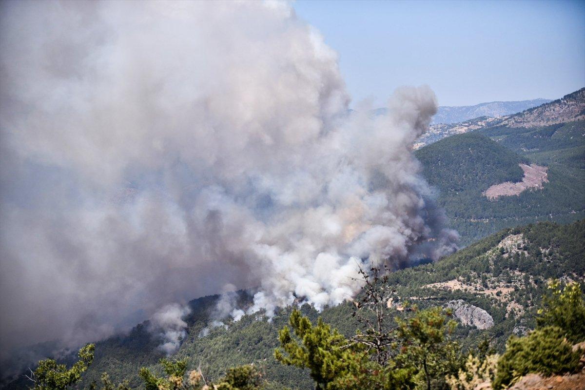 Mersin deki orman yangınıyla ilgili 4 şüpheli gözaltına alındı #5