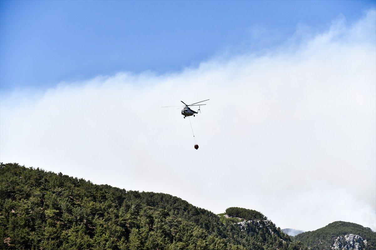 Mersin deki orman yangınıyla ilgili 4 şüpheli gözaltına alındı #4