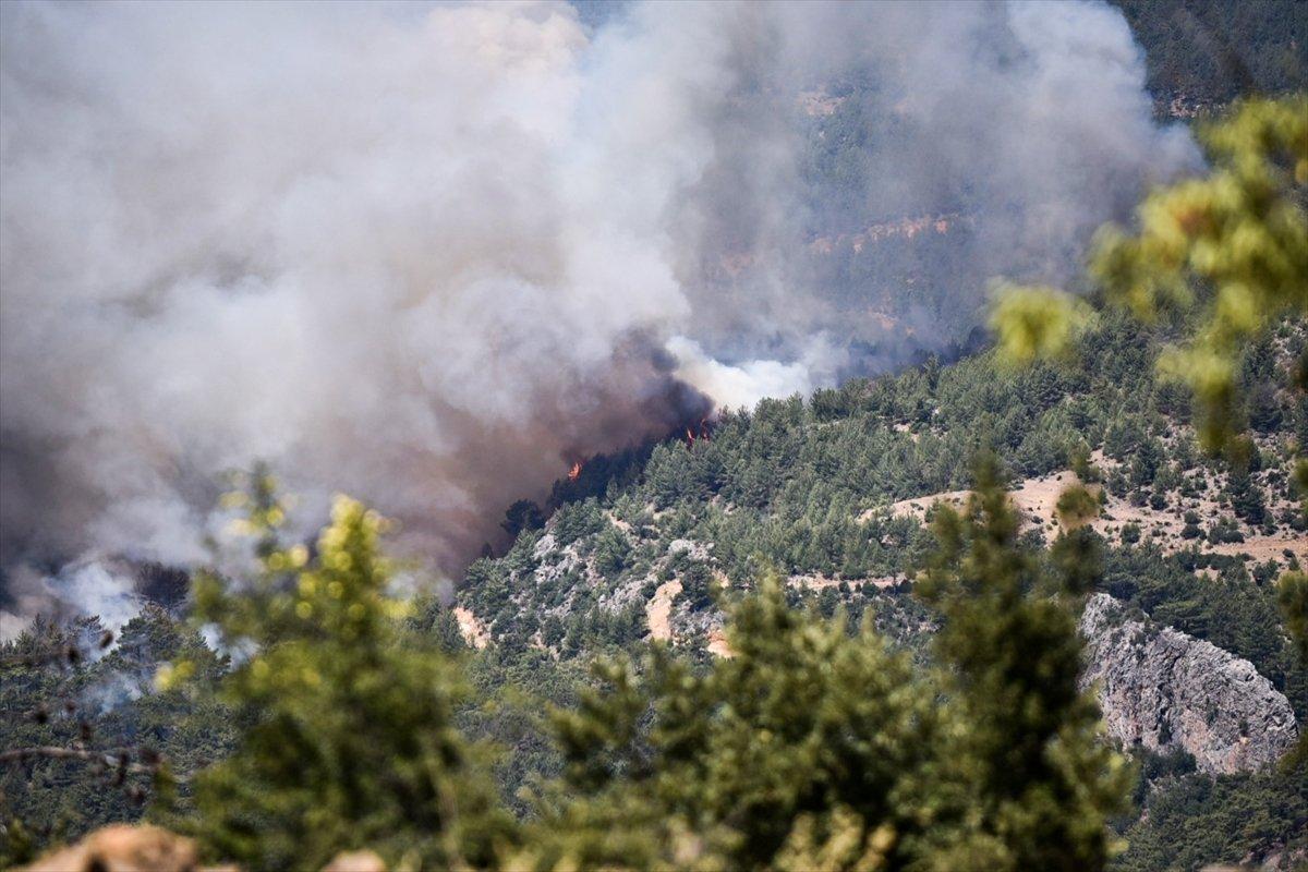 Mersin deki orman yangınıyla ilgili 4 şüpheli gözaltına alındı #2