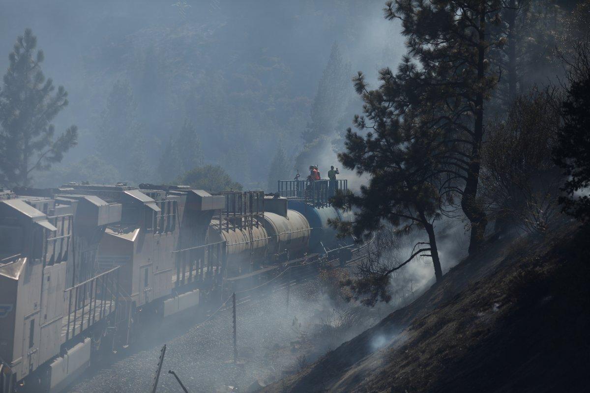 ABD nin Kaliforniya eyaletinde orman yangını #5