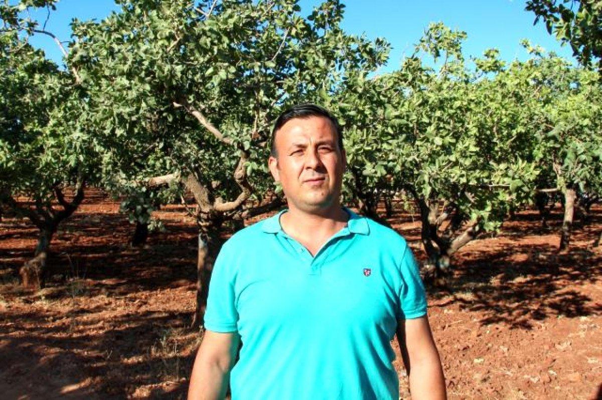 Mustafa Varank: Türkiye nin ilk lisanslı Antep fıstığı deposunu Gaziantep e kazandırdık #1