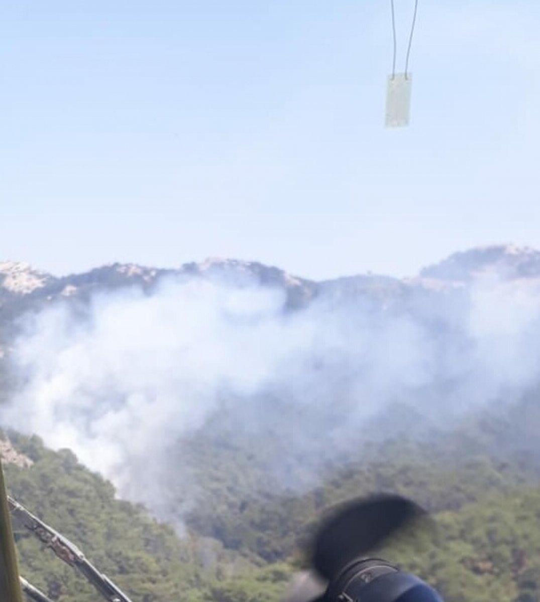 İzmir de ormanlık alanda yangın çıktı  #2
