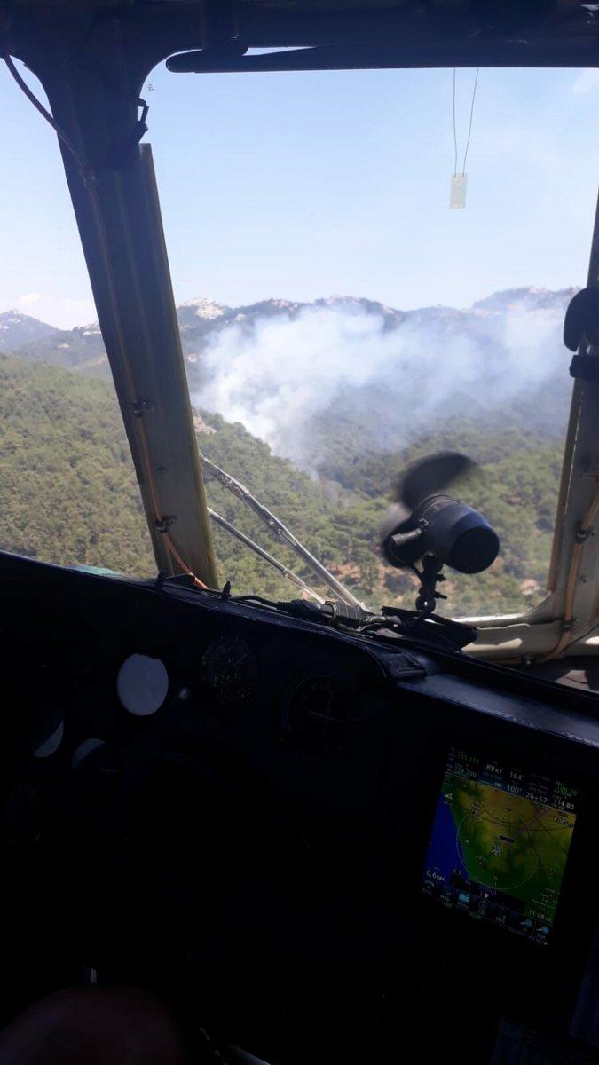 İzmir de ormanlık alanda yangın çıktı  #4