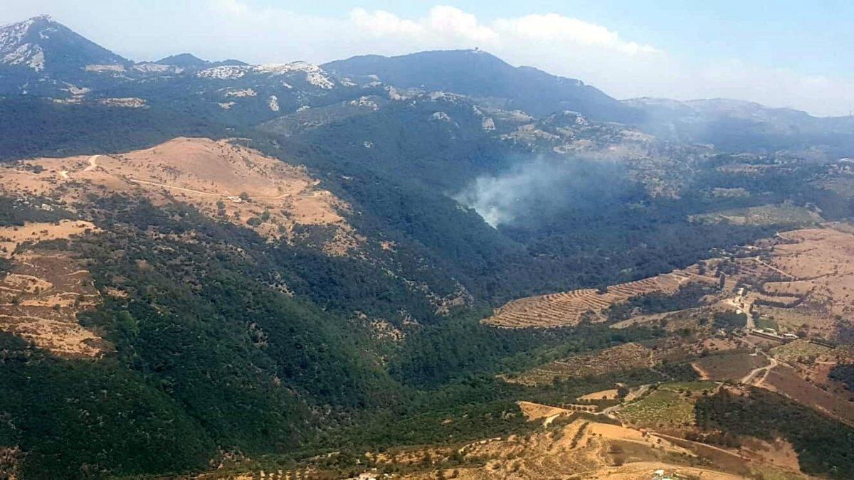 İzmir de ormanlık alanda yangın çıktı  #5
