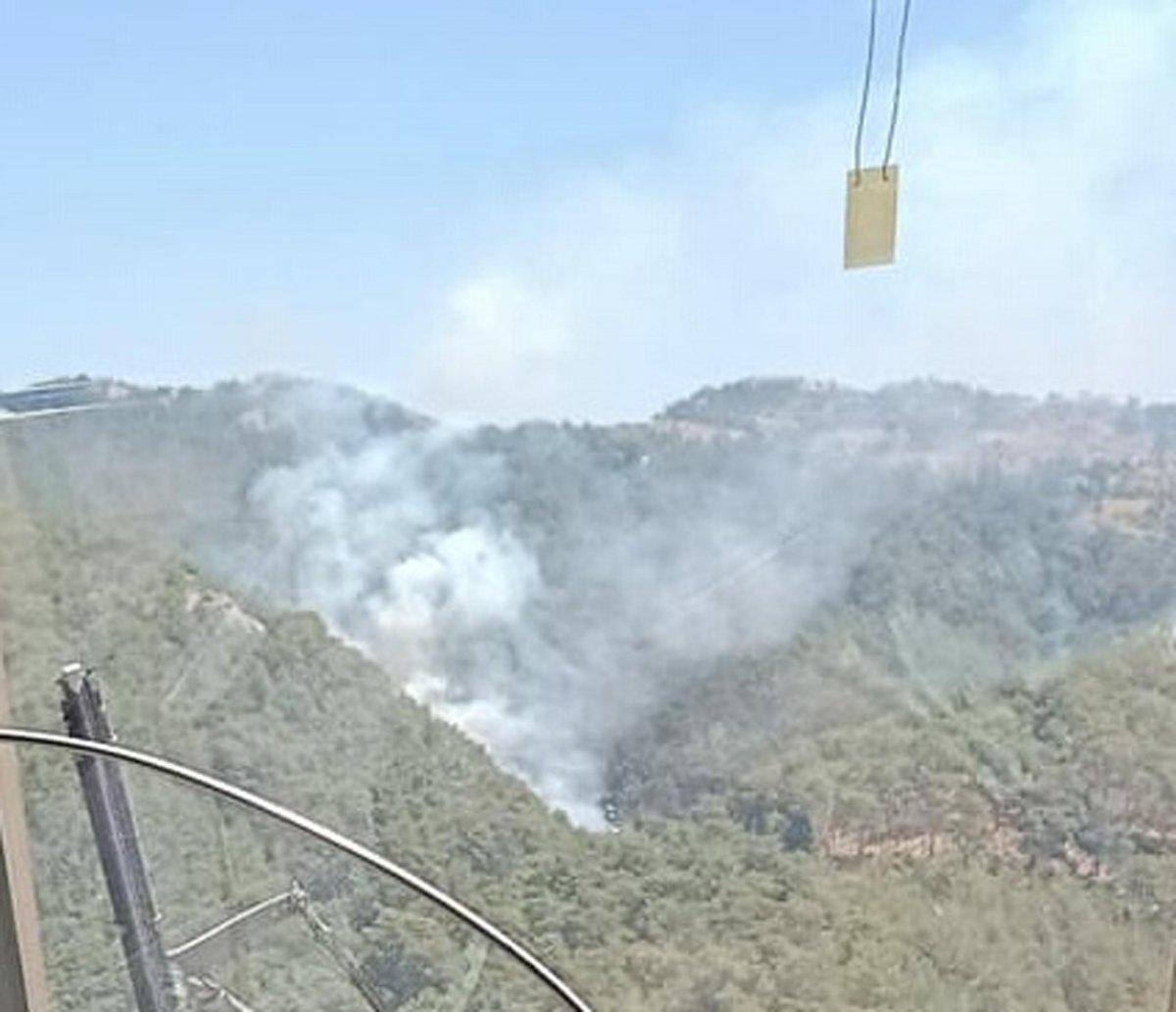 İzmir de ormanlık alanda yangın çıktı  #3