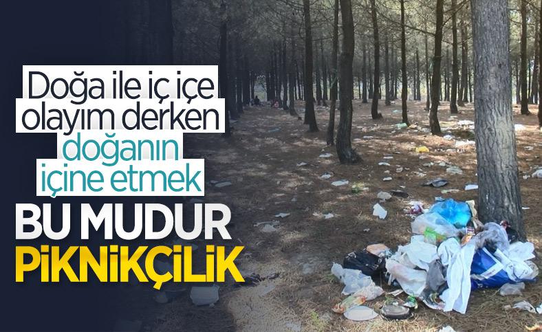Sarıyer'de piknikçilerin ormana attığı çöpler tepki çekti