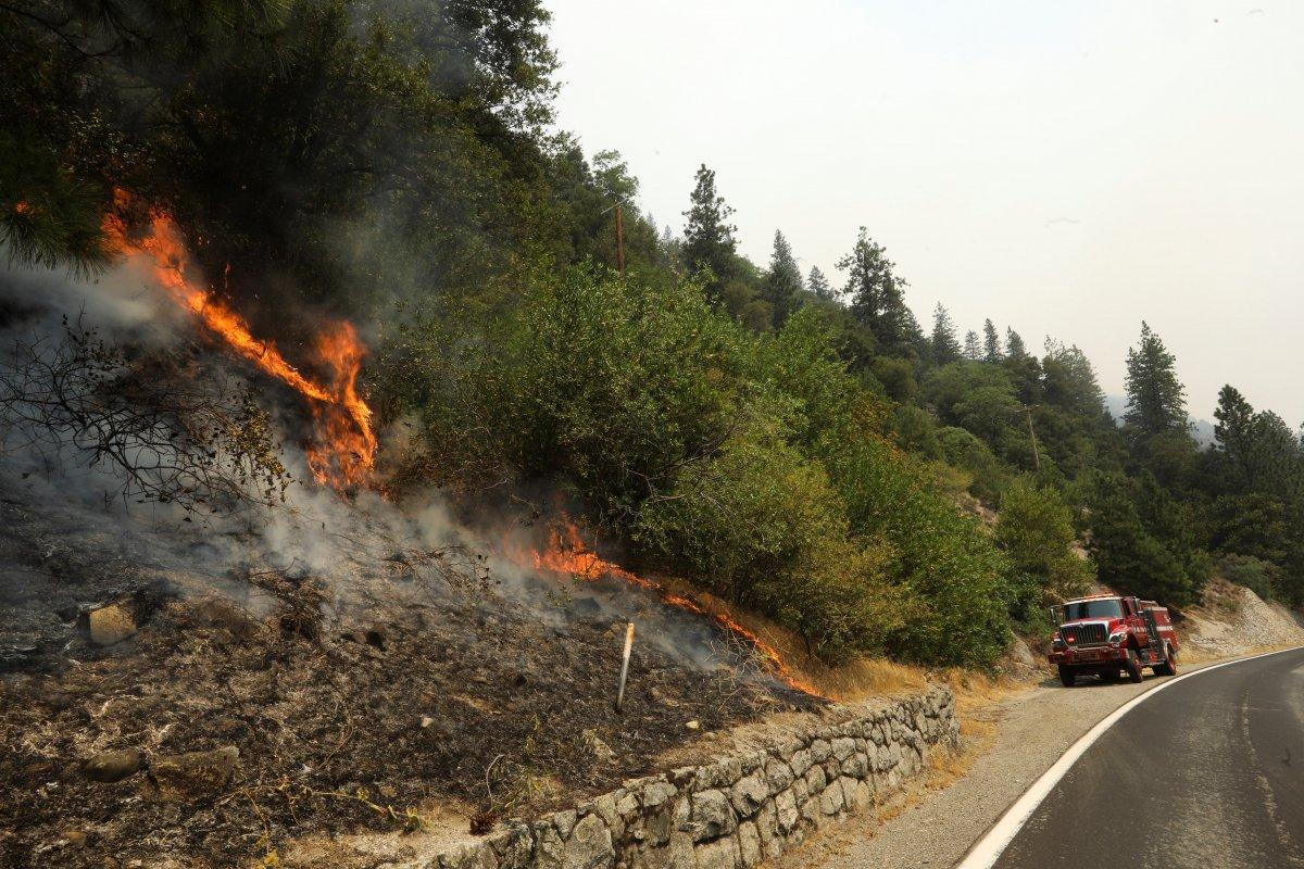 Kaliforniya da orman yangınıyla mücadele #11