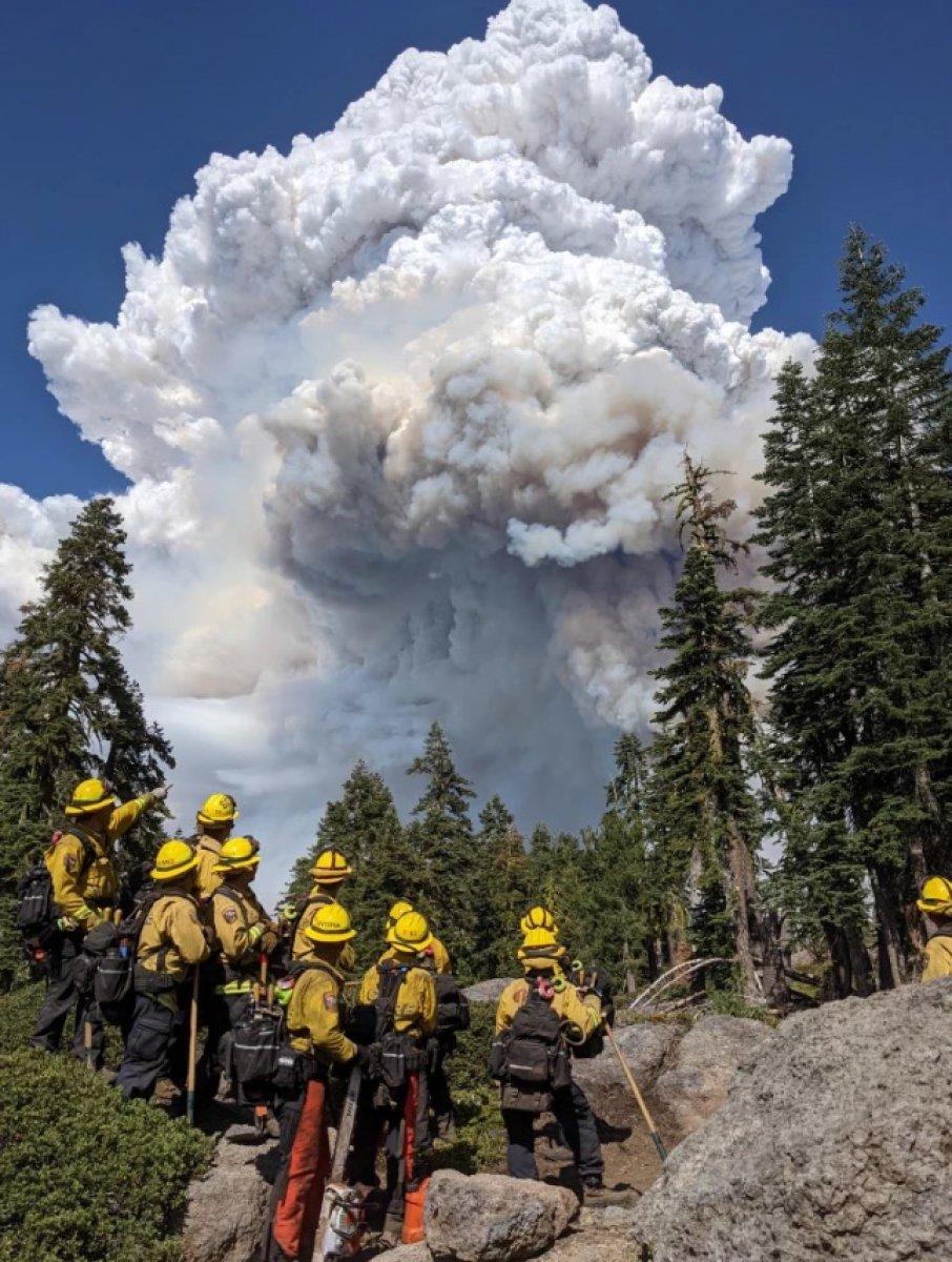 Kaliforniya da orman yangınıyla mücadele #15