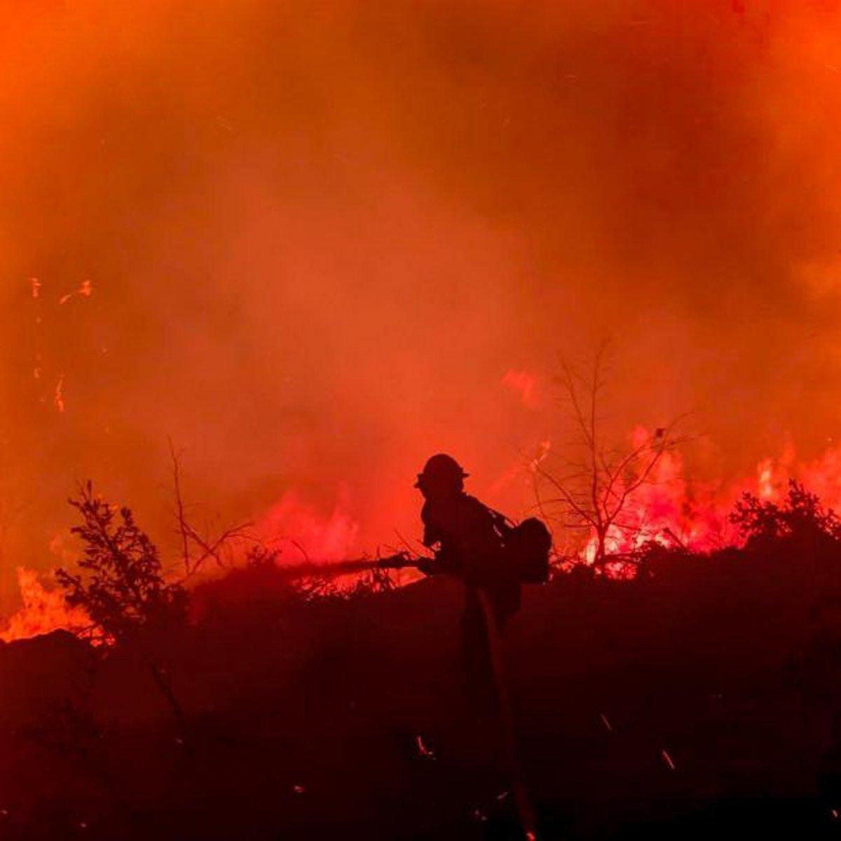 Kaliforniya da orman yangınıyla mücadele #3