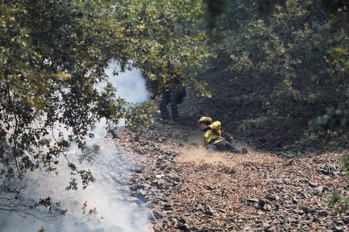 Kaliforniya da orman yangınıyla mücadele #14