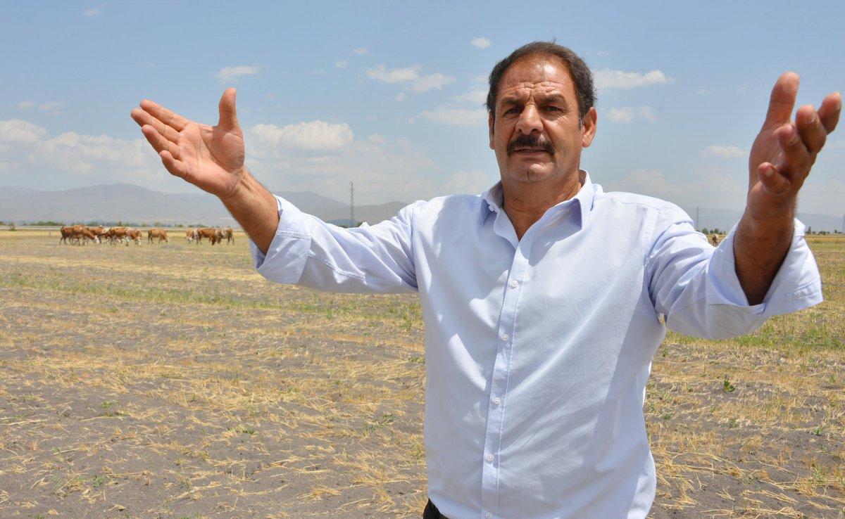 Erzurum da çoban sıkıntısı: 7 bin lirayı beğenmiyorlar #2