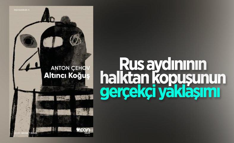 Bir toplum çözümlemesi olarak Anton Çehov'un Altıncı Koğuş hikâyesi