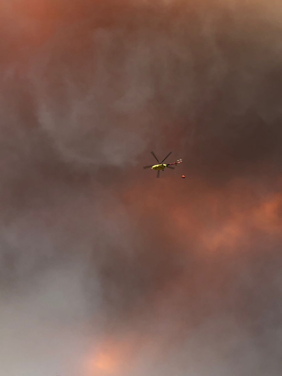 Manavgat'ta orman yangını çıktı