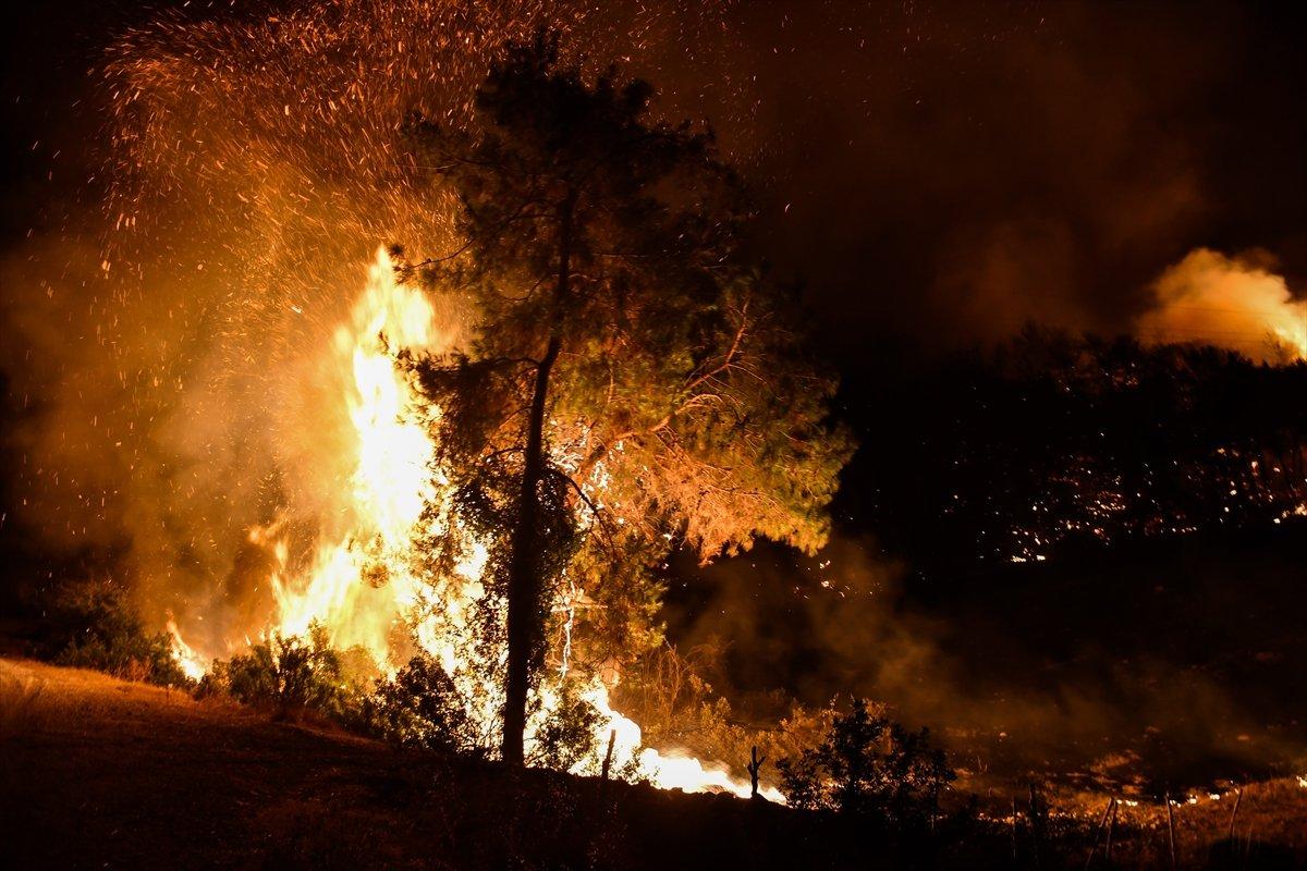 Osmaniye de yangın: 5 şüpheli gözaltına alındı #2