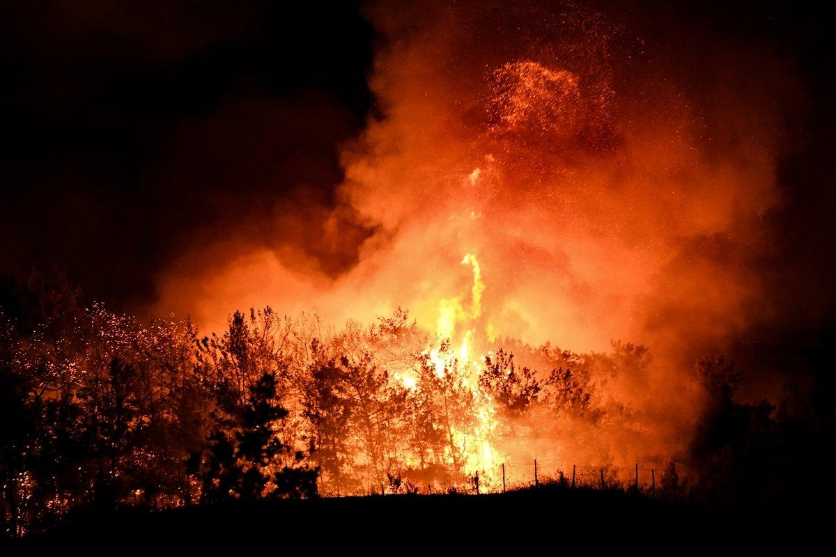 Osmaniye de yangın: 5 şüpheli gözaltına alındı #1