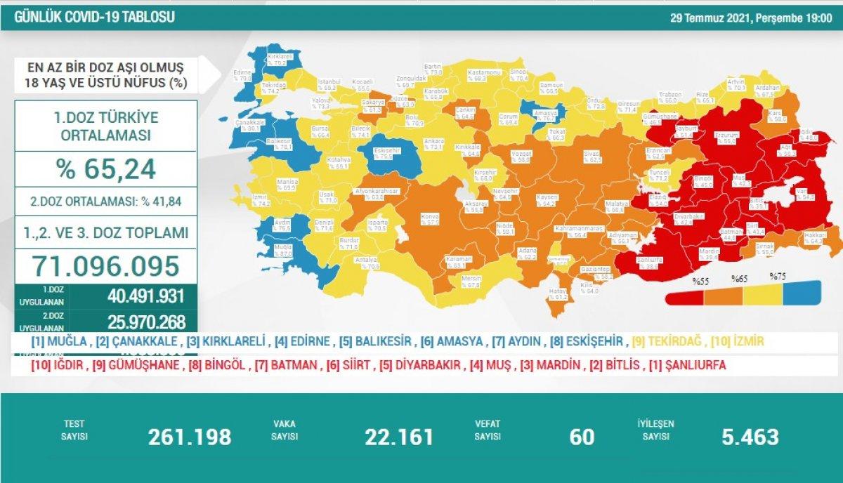 29 Temmuz Türkiye de koronavirüs tablosu #1