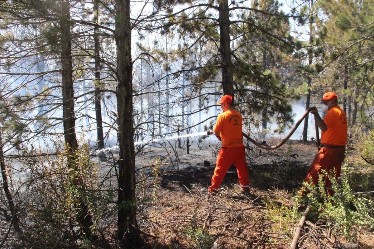 Karaman'da orman yangını #2