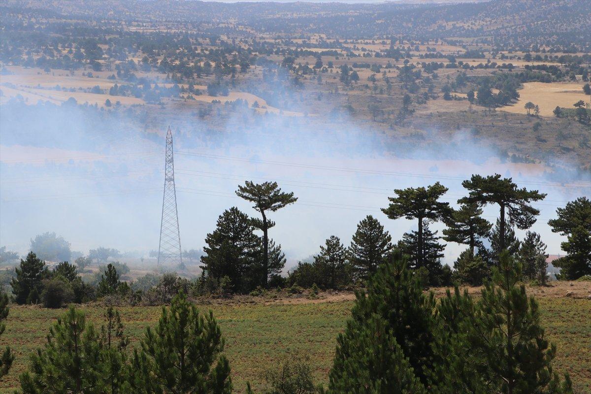 Karaman'da orman yangını #5