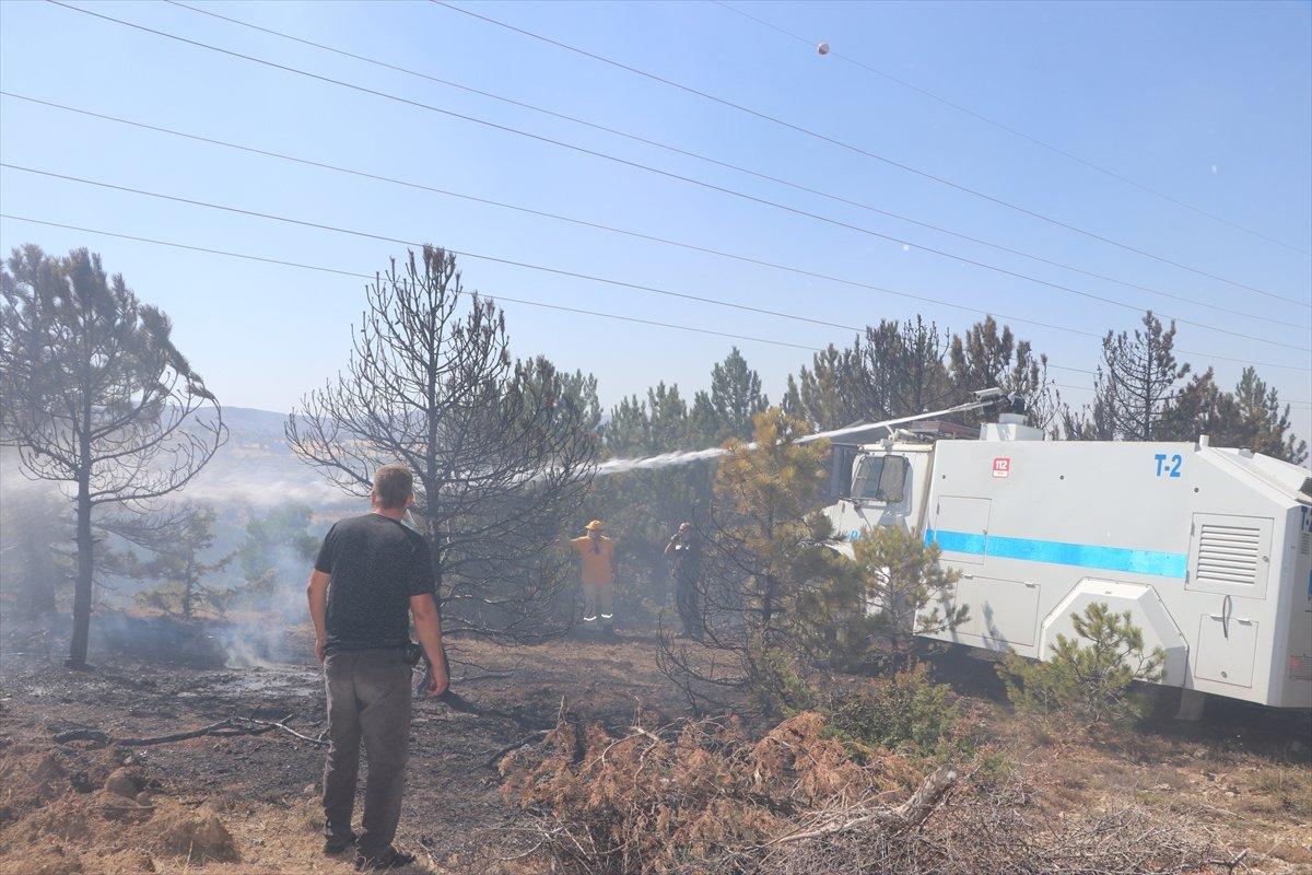 Karaman'da orman yangını #3