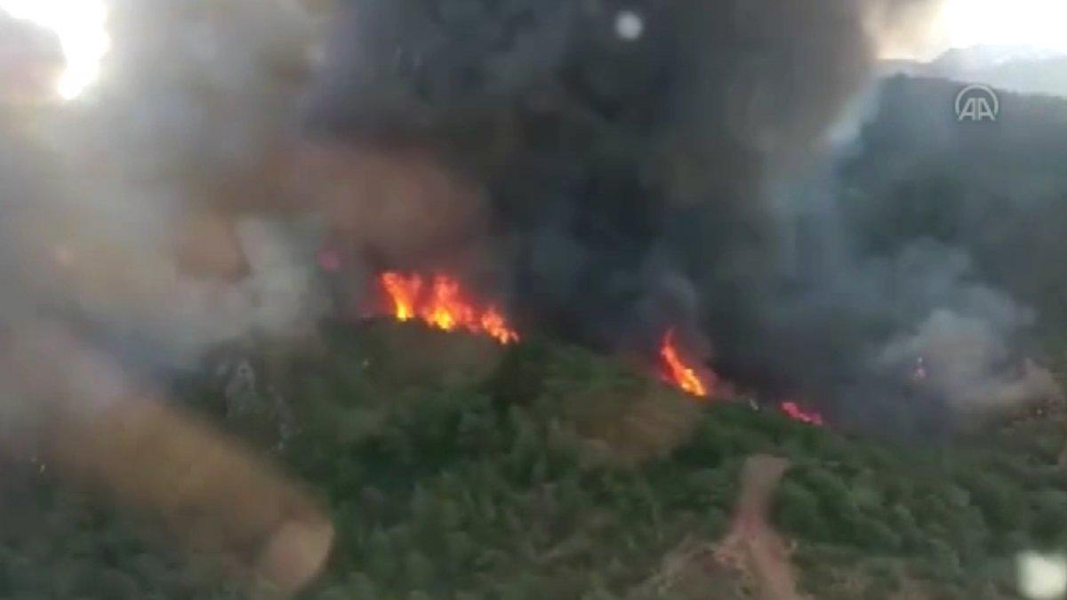 Marmaris te orman yangını #11