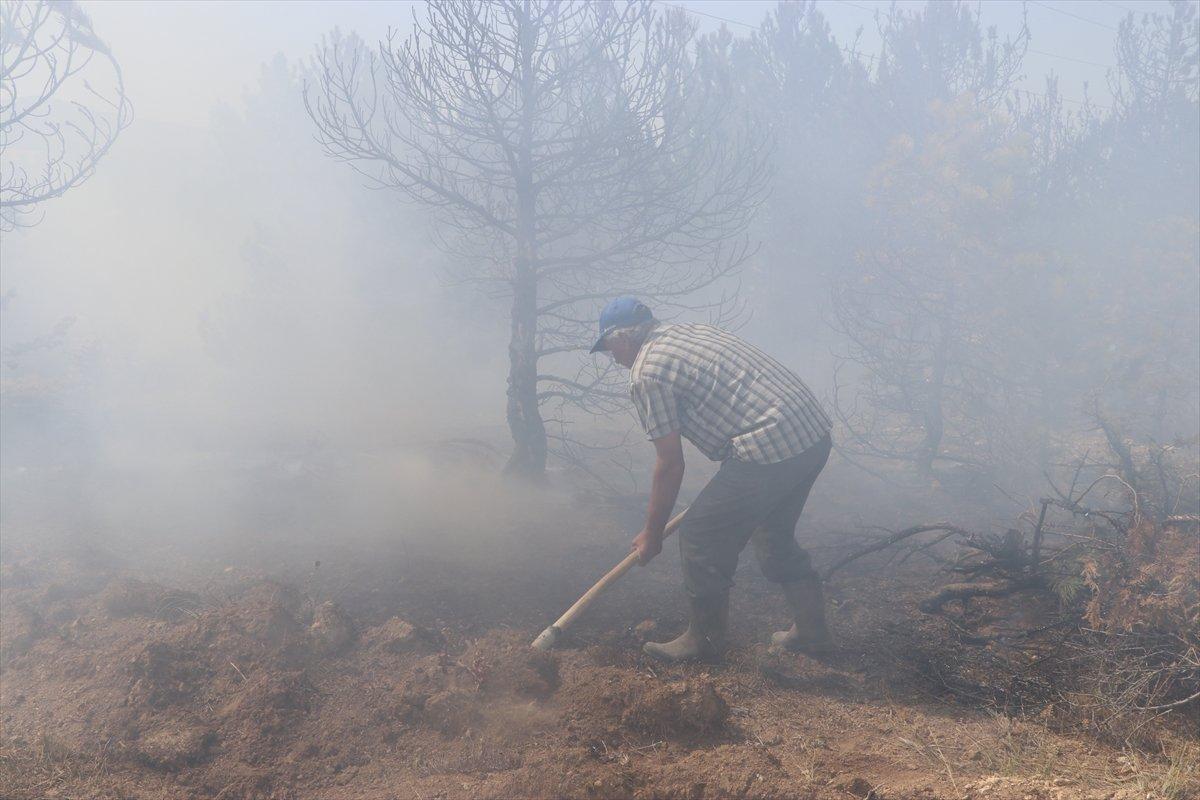 Karaman'da orman yangını #4