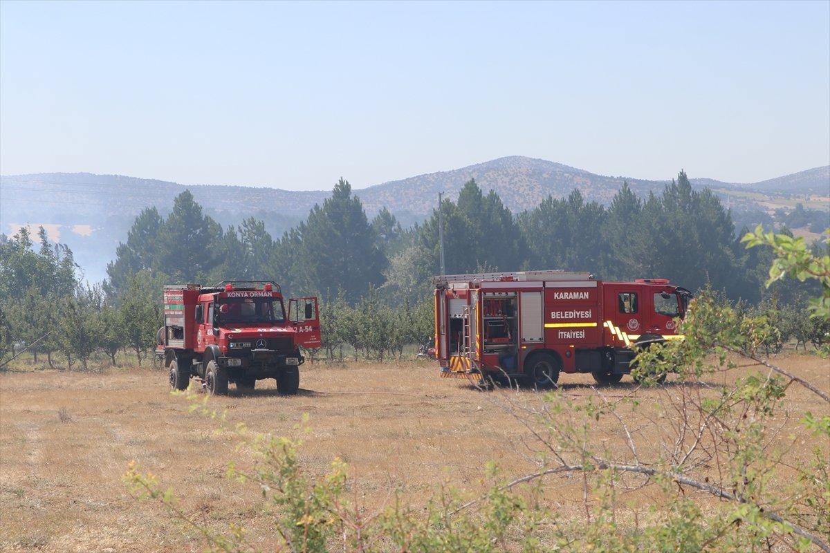 Karaman'da orman yangını #6