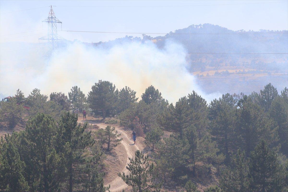 Karaman'da orman yangını #7