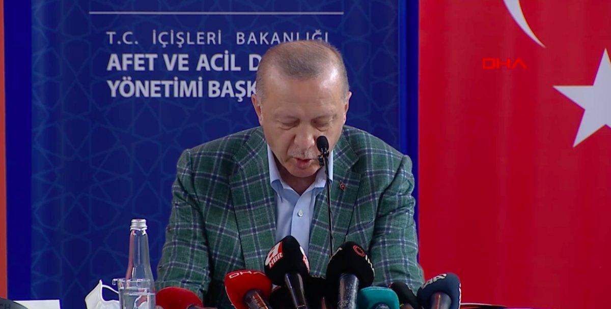 Cumhurbaşkanı Erdoğan: Yanan alanlar başka amaçla kullanılamaz #1