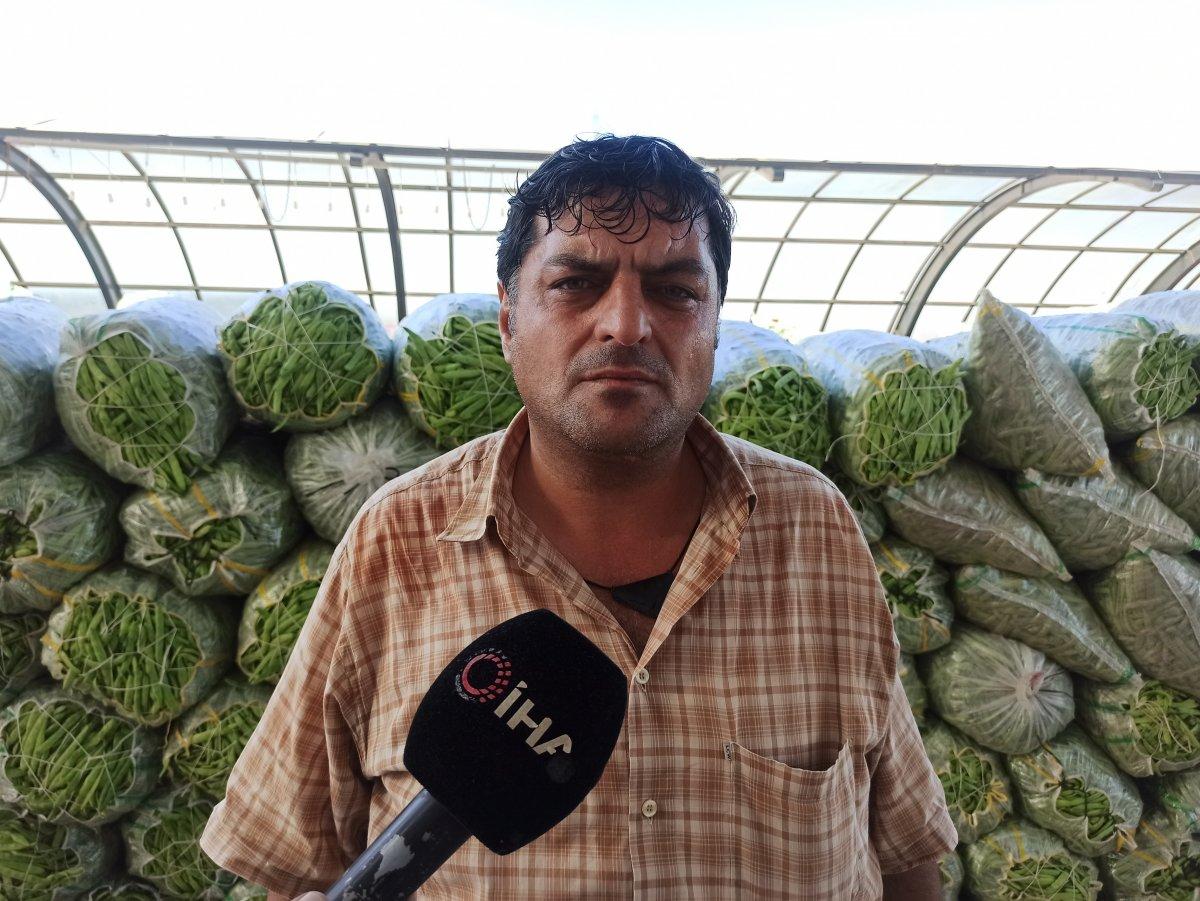 Afyonkarahisar da fasulye fiyatları üreticiyi ve esnafı mutlu etti #3