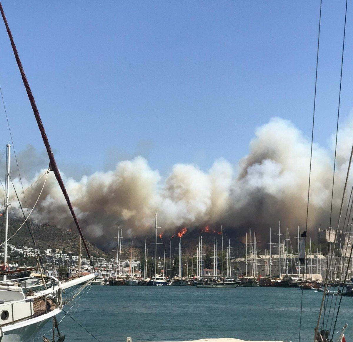 Bodrum da orman yangını #10