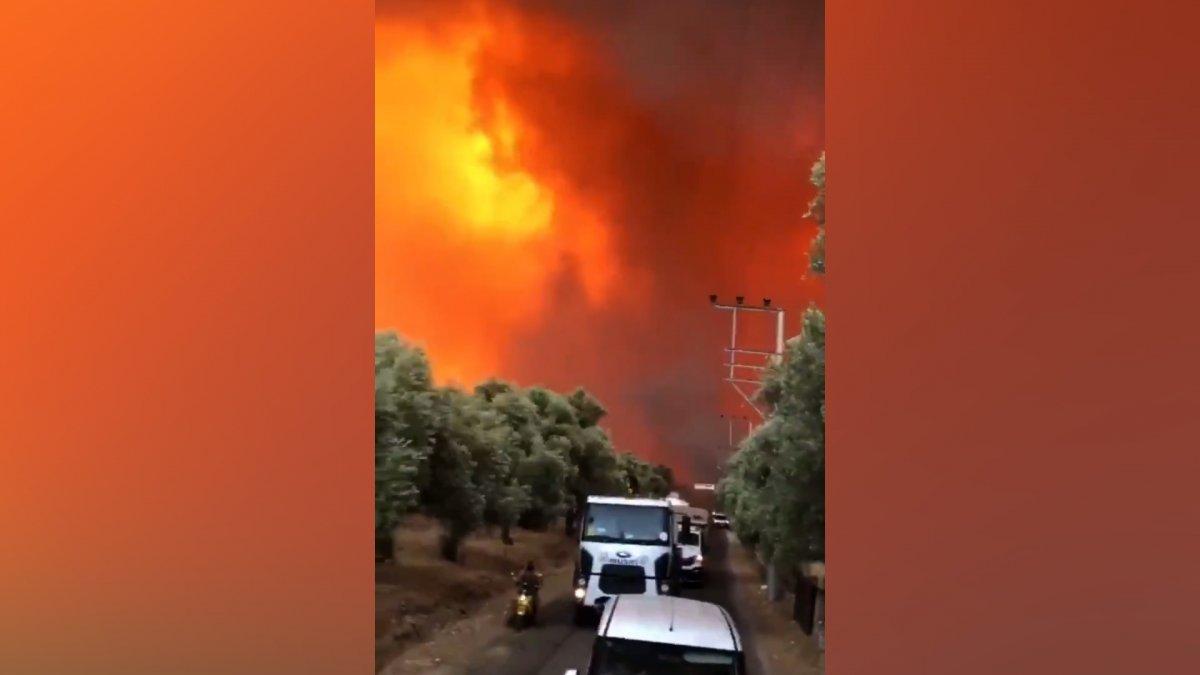 Bodrum Çökertme koyunda yangın şiddetini artırarak devam ediyor #2