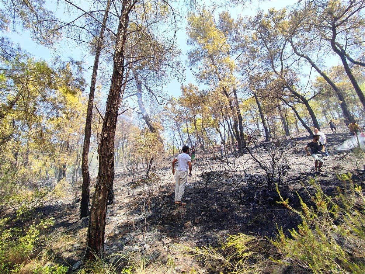 Kemer'de 3 alanda başlayan orman yangını söndürüldü #2